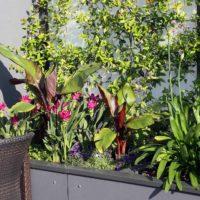 Serrault Jardins, paysagiste à la Ville aux Dames, depuis plus de 38 ans.