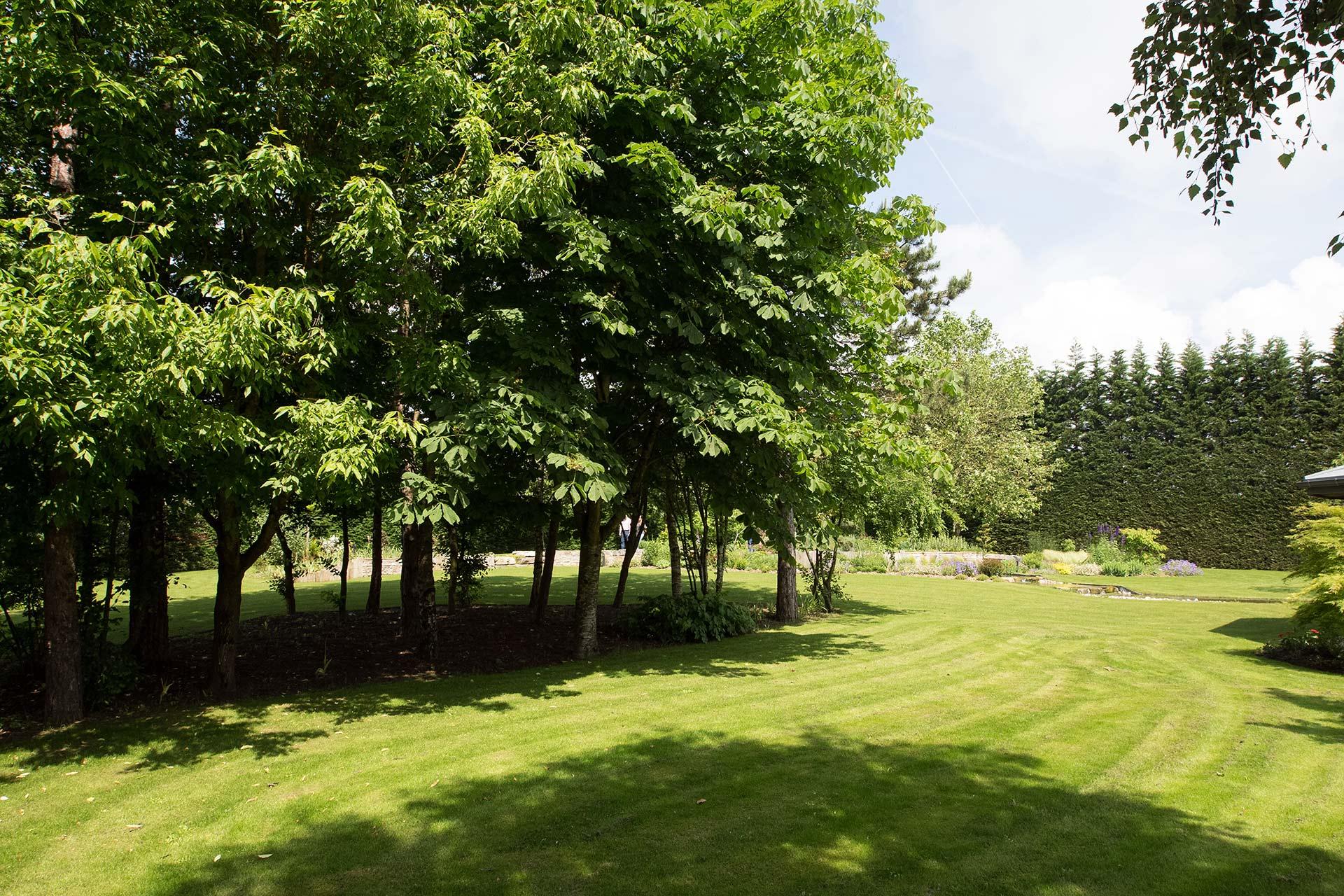 Paysagiste Indre Et Loire bassin - projet jardin 7 - serrault jardins paysagiste a la